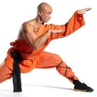 Kung-Fu boys - CZ-KAR-06-11478