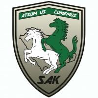 Saudi Asphalt Knights