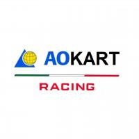 AO KART Racing