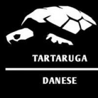 Tartaruga Danese