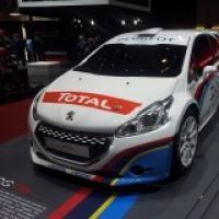 peugeot rally team