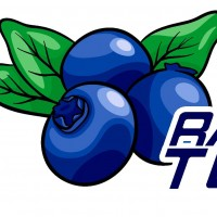 Blueberry Racing